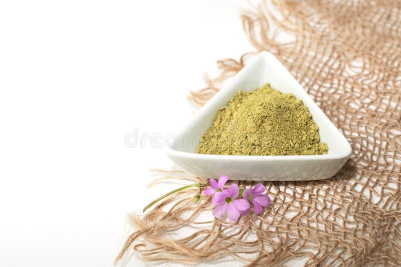 Polvere del henn? per il mehendi di tintura dei capelli e delle sopracciglia e di disegno sulle mani, con foglia di palma verde fotografia stock