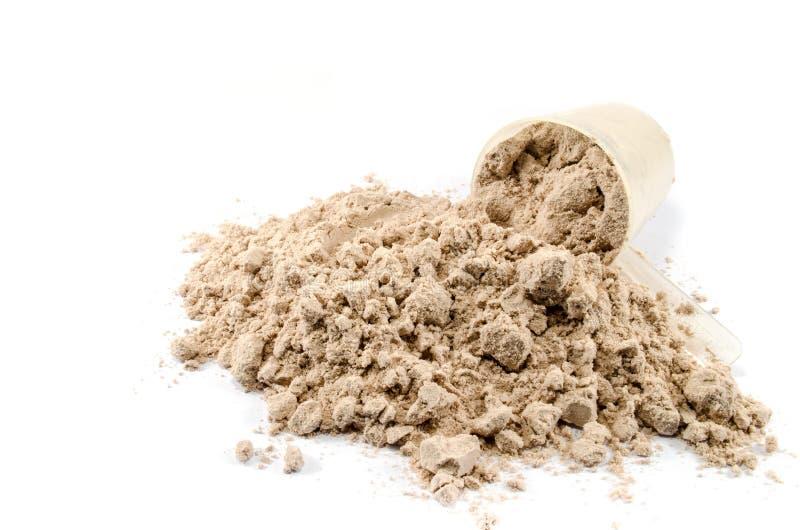 Polvere del proteina del siero immagine stock libera da diritti