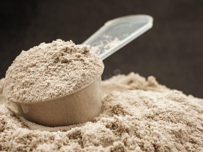 polvere della proteina per la dieta fotografie stock libere da diritti
