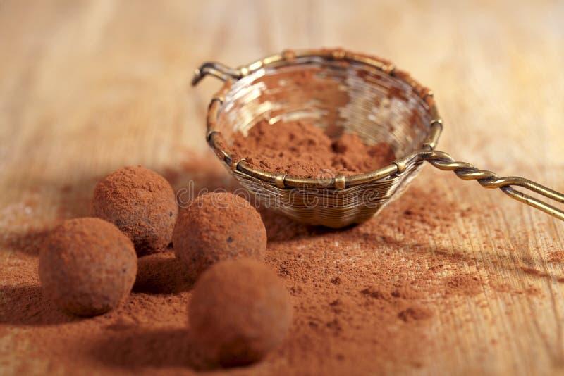 Polvere Di Cacao Dei Tartufi Di Cioccolato Impolverata Fotografie Stock Libere da Diritti
