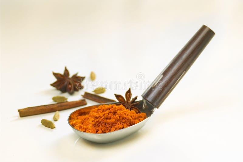 Polvere di curry immagini stock