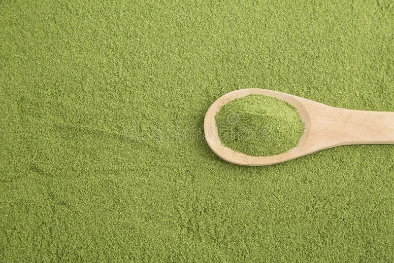 Polvere di Moringa - moringa oleifera immagini stock