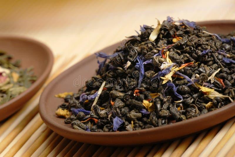 Polvo chino del té verde. imagen de archivo libre de regalías