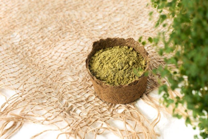 Polvo de la alheña para el mehendi de teñido del pelo y de las cejas y del dibujo en las manos, con las hojas verdes, las flore imagen de archivo libre de regalías