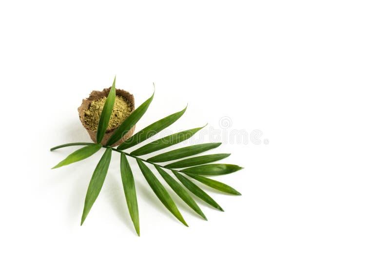 Polvo de la alhe?a para el mehendi de te?ido del pelo y de las cejas y del dibujo en las manos, con la hoja de palma verde fotos de archivo libres de regalías