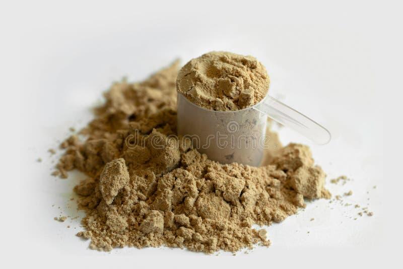 Polvo de la proteína del cacao sobre el fondo blanco imagenes de archivo