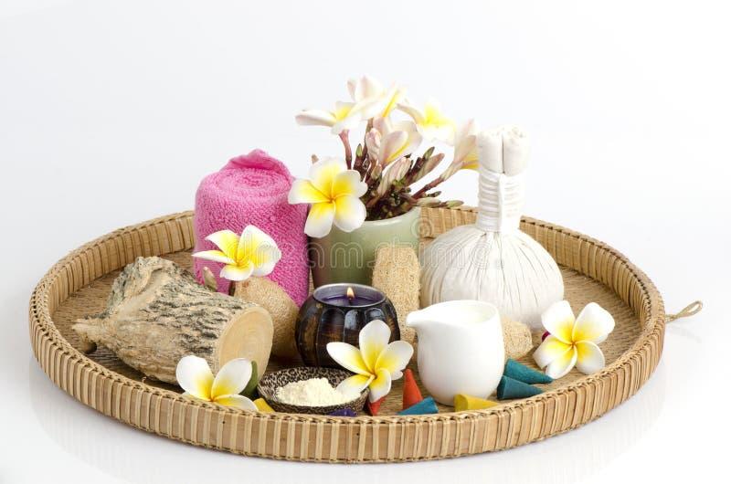 Polvo de Thanakha y leche fresca para la piel que siente suave y lisa imagen de archivo
