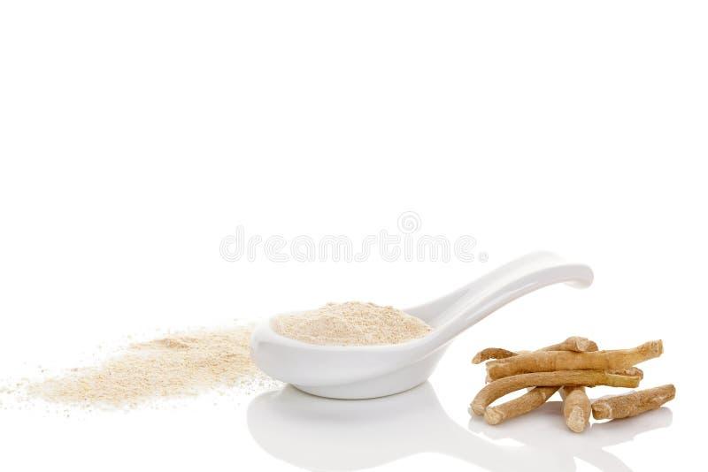 Polvo del superfood de Ashwagandha foto de archivo libre de regalías