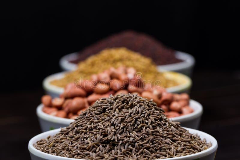 Polvo indio de la comida foto de archivo