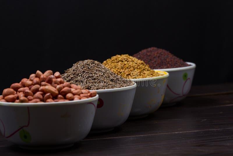 Polvo indio de la comida imagen de archivo