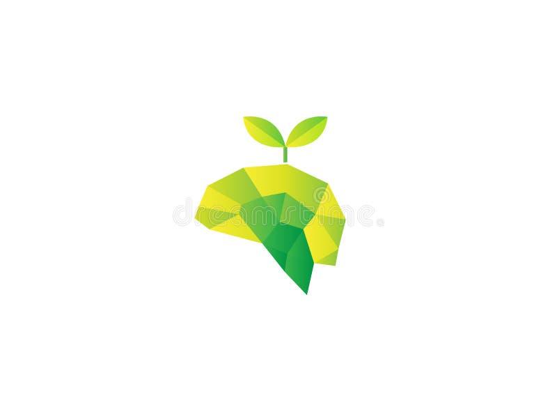 Poly hjärna med bladet för bio illustration för naturlogodesign royaltyfri illustrationer