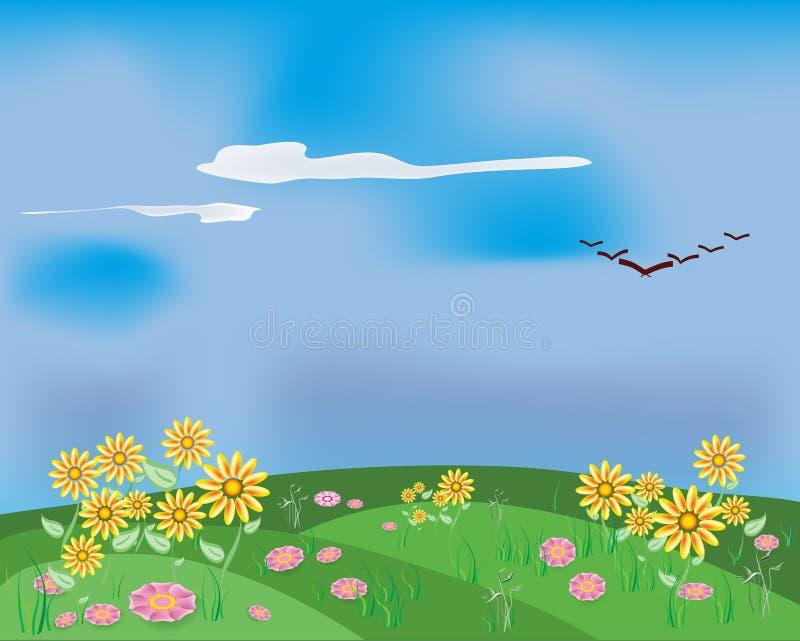 poly kwiatów wiosna obrazy stock