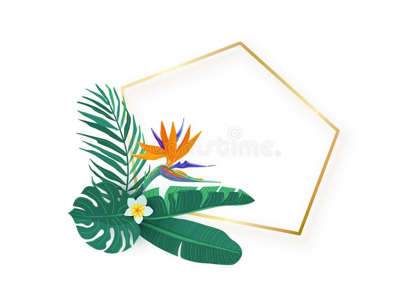 Polygon slanted gold frame with tropical hawaii strelitzia flower leaves bouquet vector background. Tropic exotic stock photos