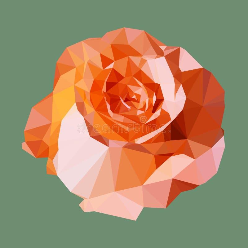 Polygonal πορτοκαλής αυξήθηκε, γεωμετρικό λουλούδι πολυγώνων, διάνυσμα ελεύθερη απεικόνιση δικαιώματος