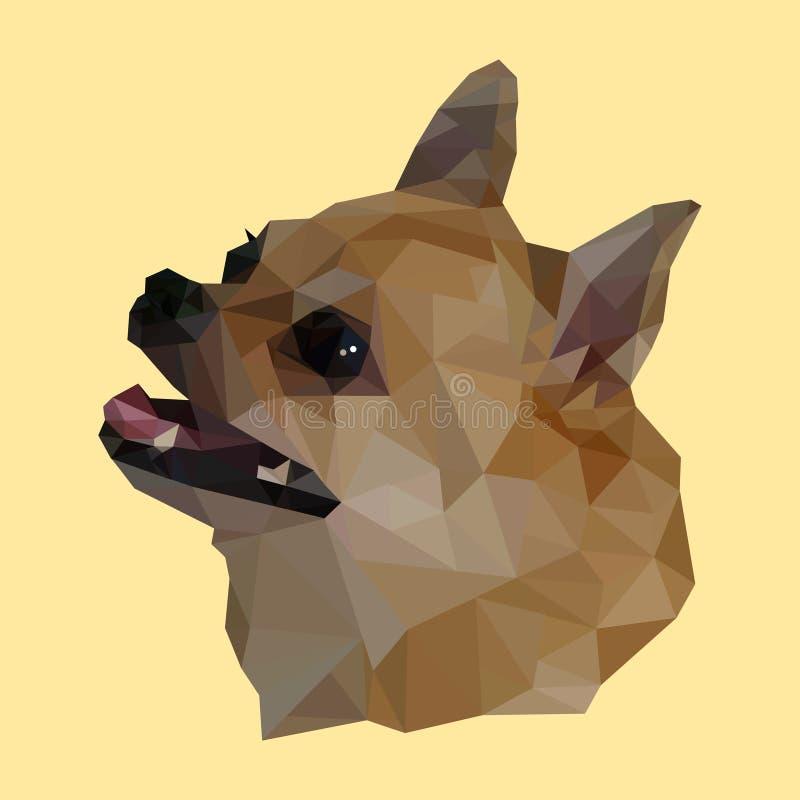 Polygonal hunds huvud, polygondjur, chihuahuavektor royaltyfri illustrationer