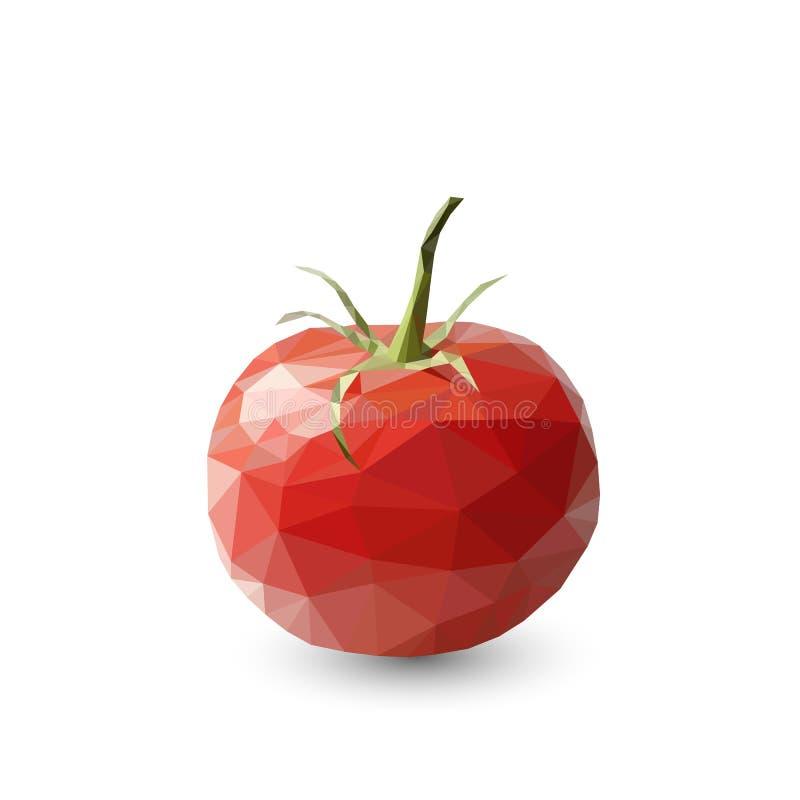 Polygonal tomat, abstrakt geometrisk illustration royaltyfri illustrationer