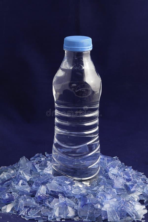 Polymères en plastique réutilisés hors de bouteille d'eau d'ANIMAL FAMILIER photographie stock libre de droits
