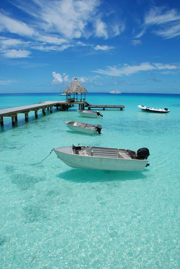 Free Polynesia Seascape Royalty Free Stock Photography - 8712197