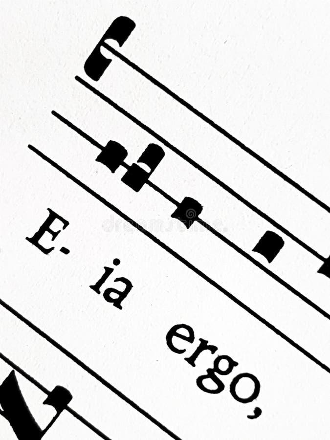 Pomada gregoriana Regina da contagem do canto, close up fotografia de stock royalty free