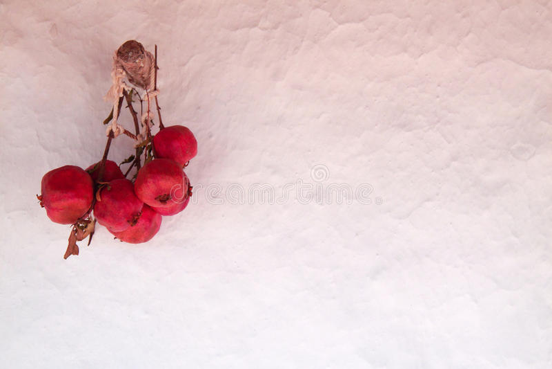 Pomagranate стоковая фотография rf