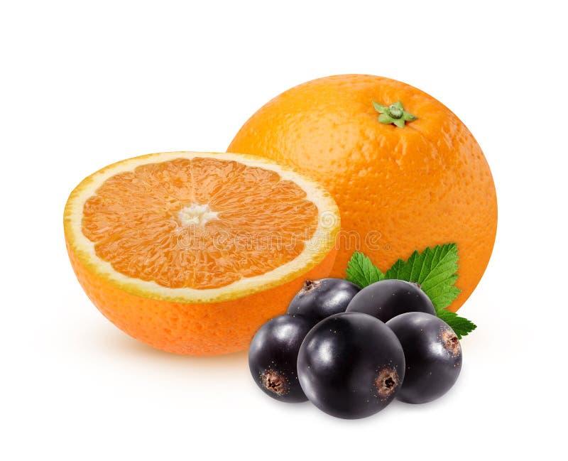 Pomarańczowy i czarny rodzynek odizolowywający na białym tle obraz stock