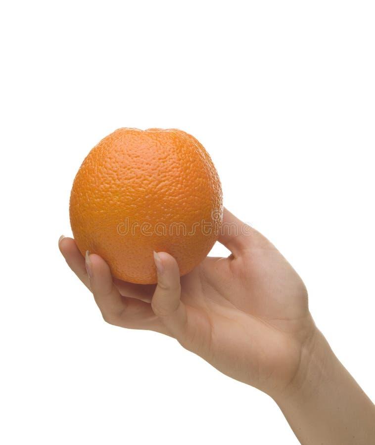 pomarańcze gospodarstwa obraz royalty free