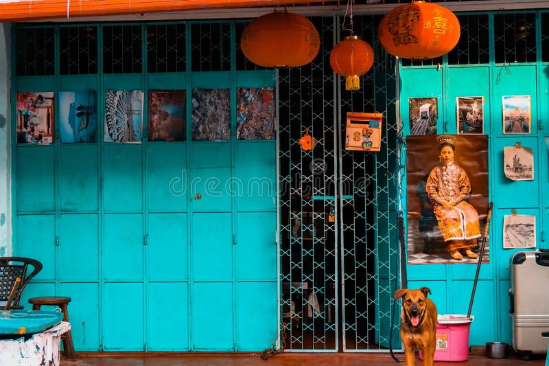 Pomarańcze i cyraneczka fotografia stock