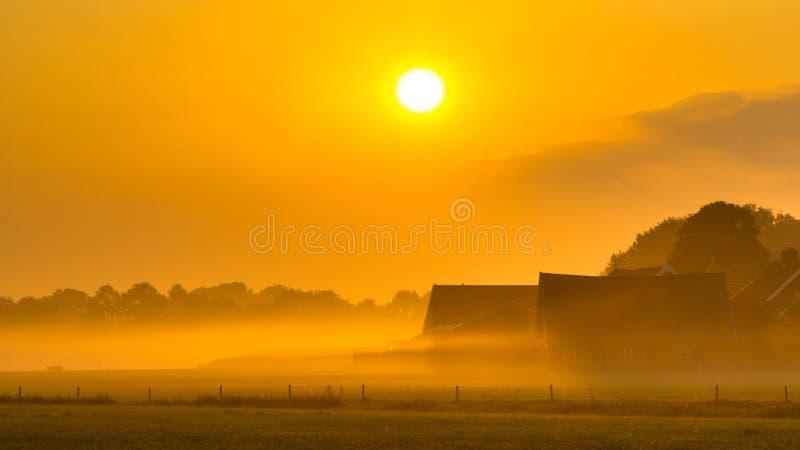 Pomarańcze rolnego wschodu słońca agricutural sceneria zdjęcia stock