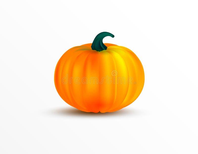 Pomarańczowa dyniowa wektorowa ilustracja Jesień Halloween lub dziękczynienie bania, jarzynowa graficzna ikona odizolowywająca na ilustracja wektor