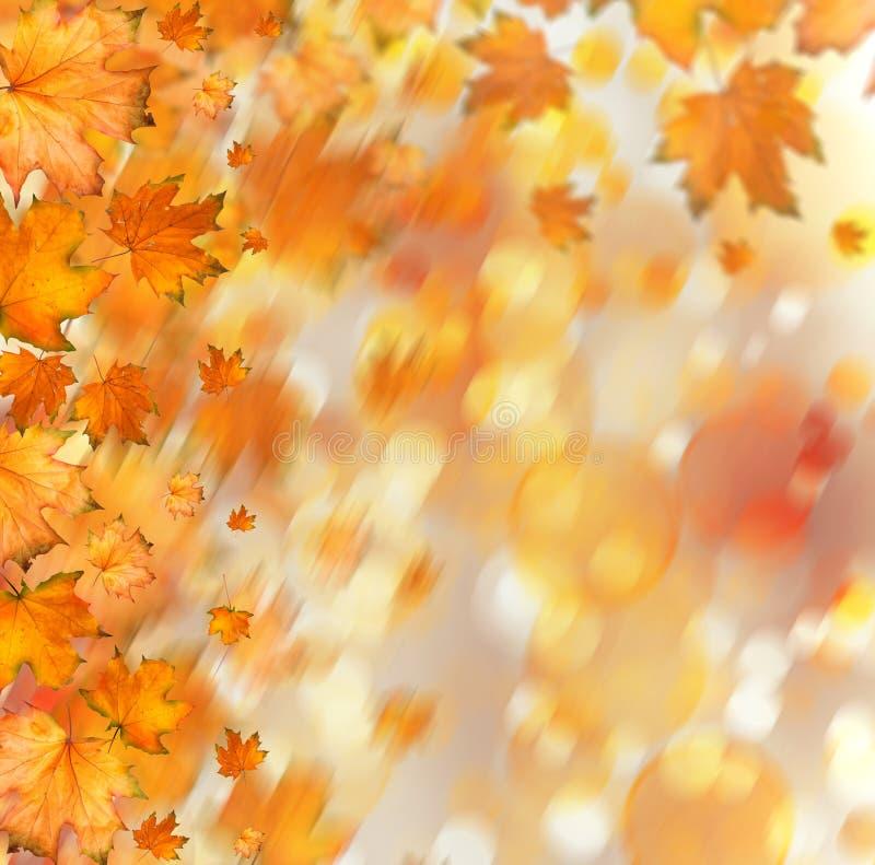 Pomarańczowa jesienna gałąź drzewo na abstrakcjonistycznym tle royalty ilustracja