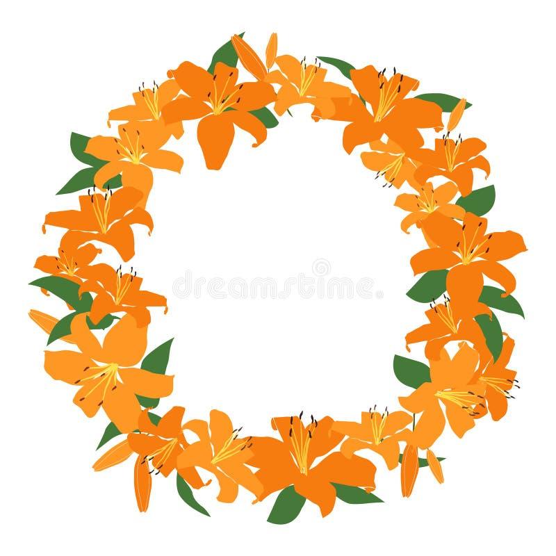 Pomarańczowa lelui rama, kwiecista wianku okręgu rama, odosobniony wektor royalty ilustracja