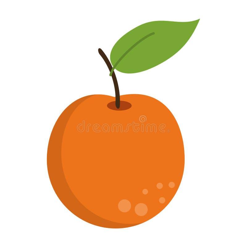 Pomarańczowa owocowa świeża żywność ilustracja wektor