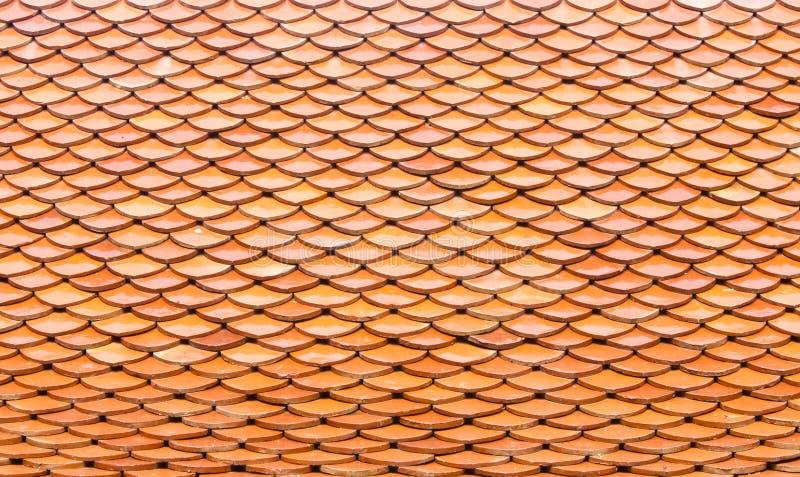 Pomarańczowa płytka zdjęcie royalty free