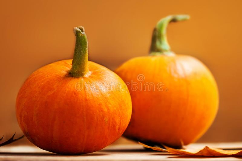 Pomarańczowe banie nad drewnianym stołem Szczęśliwy dziękczynienie dnia backgr zdjęcia royalty free