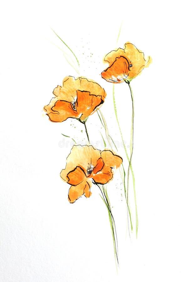 pomarańczowe maku ilustracji