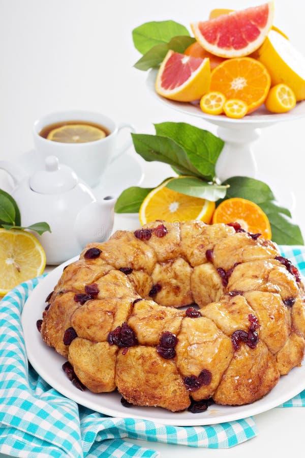 Pomarańczowej cranberry małpy w oddaleniu chleb obraz stock