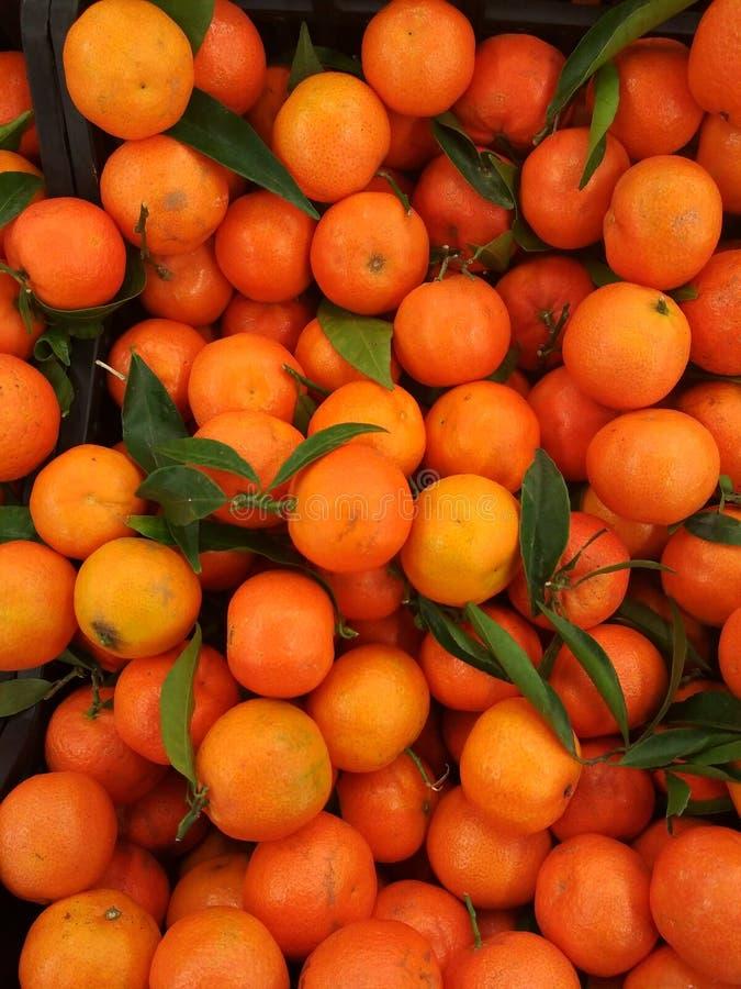 Pomarańczowi świezi tangerines z liśćmi obraz stock