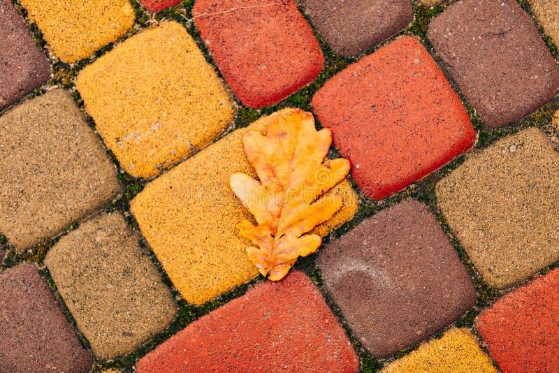 Pomarańczowi i żółci flizy, brukują zdjęcie royalty free