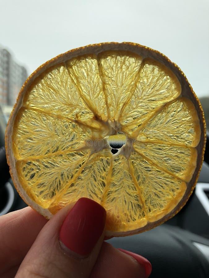 Pomarańczowi układ scalony fotografia stock
