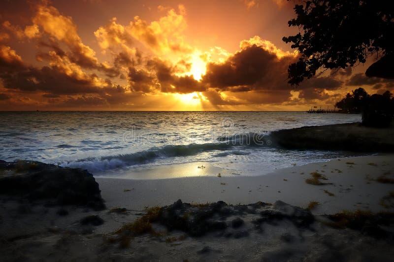 Pomarańczowy światło słoneczne obraz stock