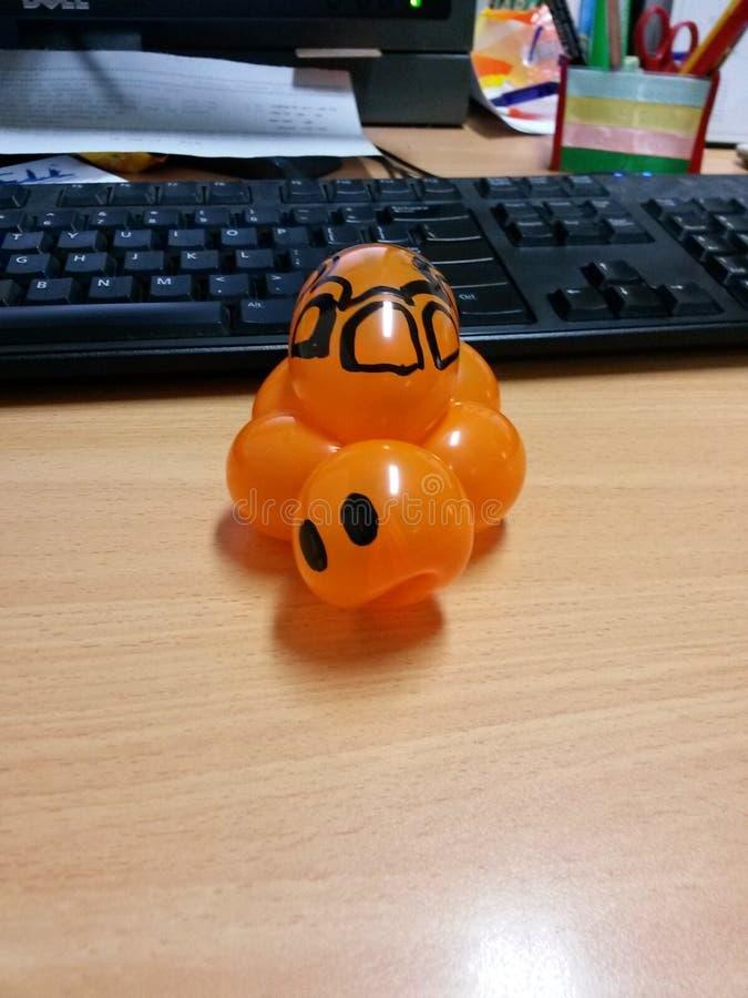 pomarańczowy żółw zdjęcia royalty free