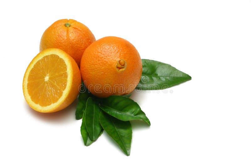 - pomarańczowy obrazy stock