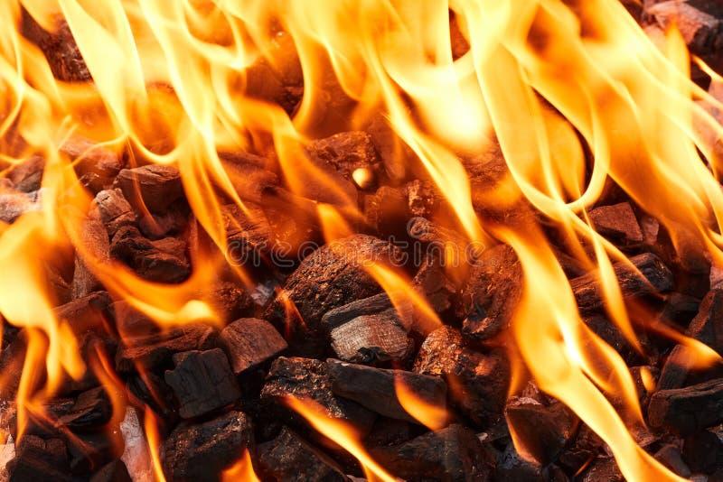 Pomarańczowy dziki ogień na czerń węglu przygotowywał dla grilla grilla zdjęcia royalty free