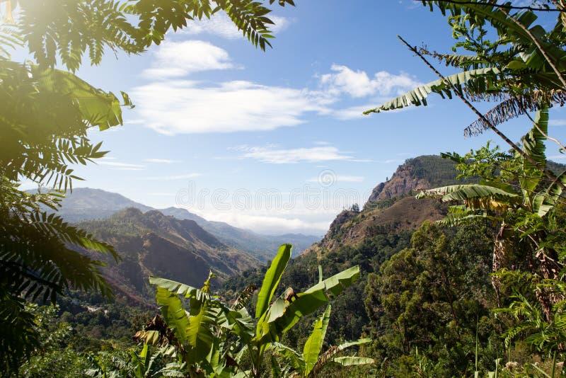 pomarańczowy górski filtra panorama niebios Dolina i roślinność zdjęcie stock