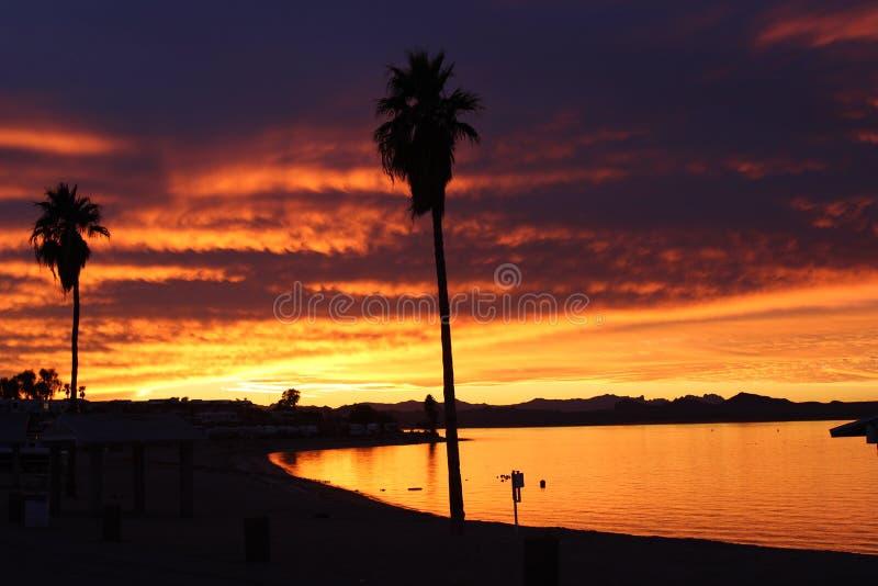 Pomarańczowy i Czerwony zmierzch nad Jeziornym Havasu Arizona z drzewkami palmowymi fotografia royalty free
