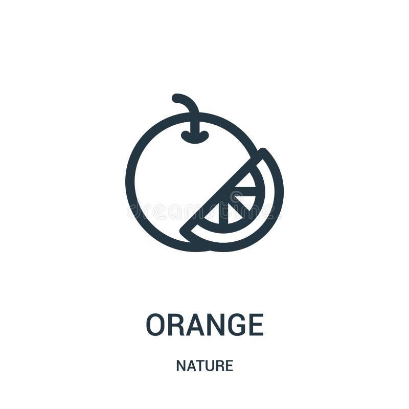 pomarańczowy ikona wektor od natury kolekcji Cienka kreskowa pomarańczowa kontur ikony wektoru ilustracja Liniowy symbol dla używ ilustracji