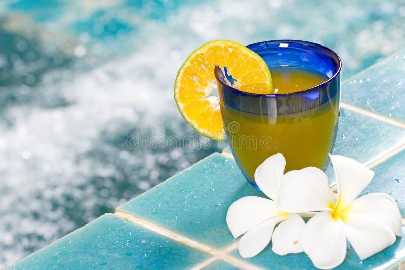 Pomarańczowy koktajl obrazy stock