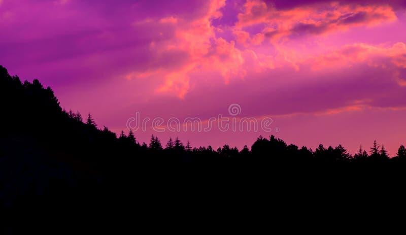 Pomarańczowy koloru zmierzch chmurnieje fotografię z sylwetką sosnowy las przy wzgórzem zdjęcie stock