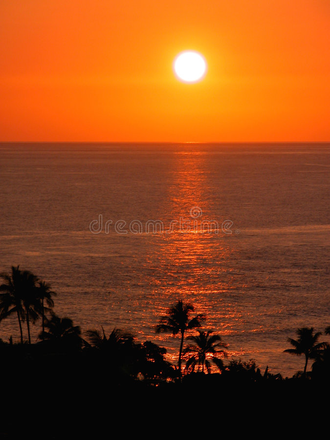 pomarańczowy niebo tropikalny słońca obraz royalty free