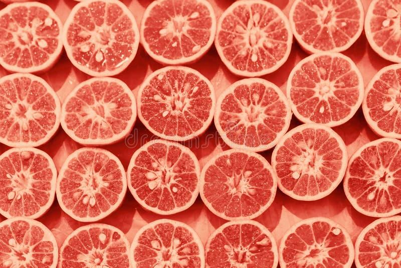 Pomarańczowy wzór colorized plasterka wystrzału sztuka obrazy royalty free